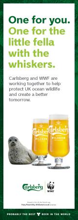 Carlsberg Banner